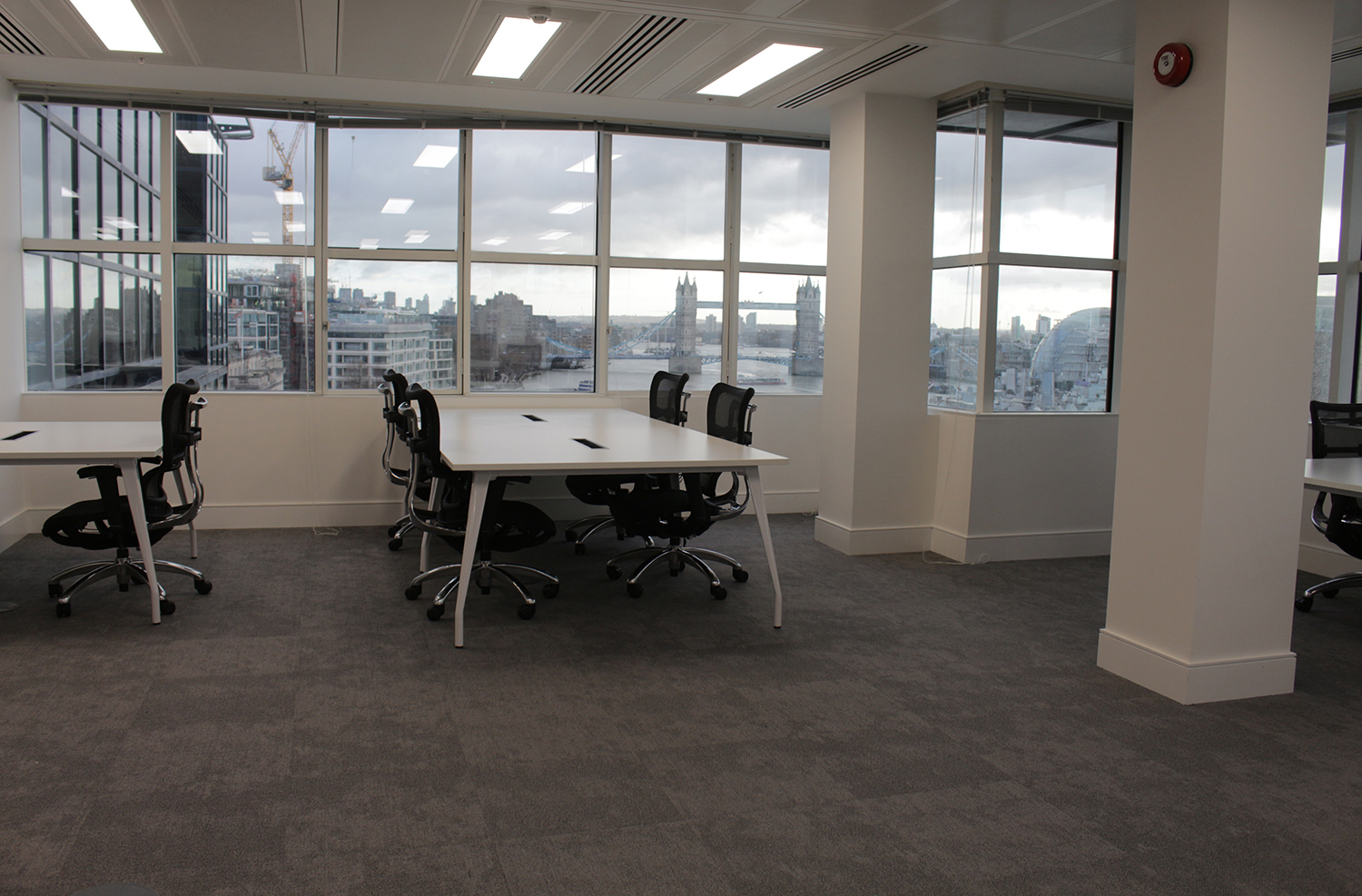 Freedom Storm on floor at London Office