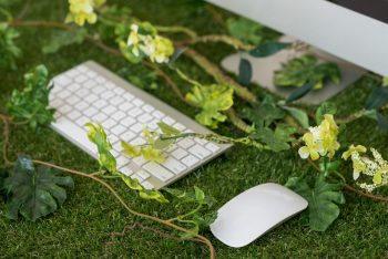 Keypad and mouse among greenery - bringing nature into the office