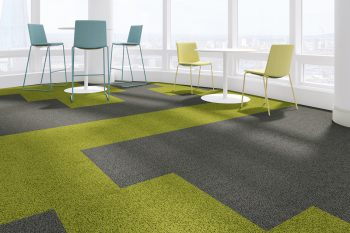 Colour in office Trend and Visualise